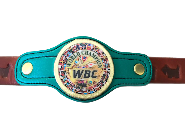 Product shot of World Boxing Council small dog Collar